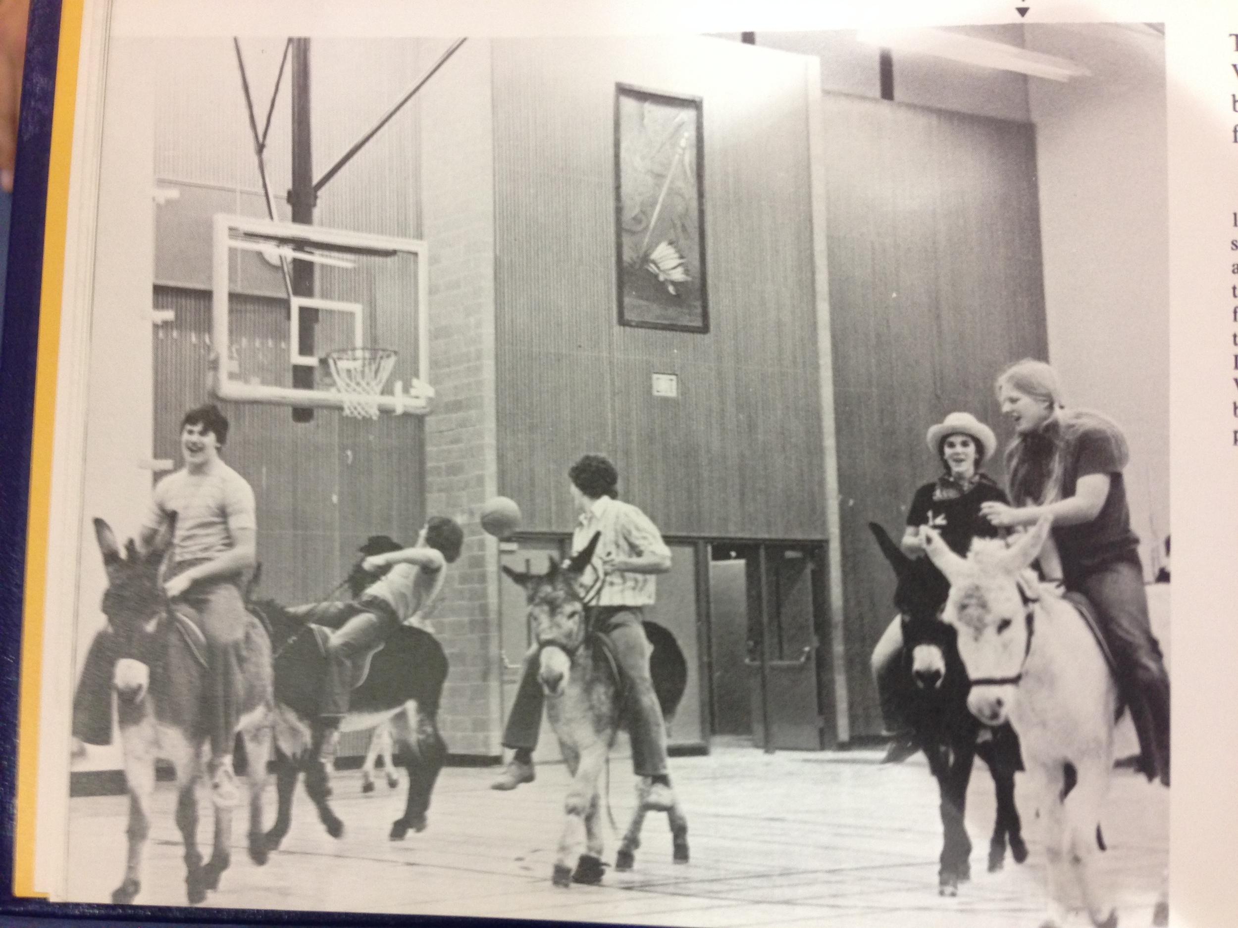 1974 Donkey bball.jpg