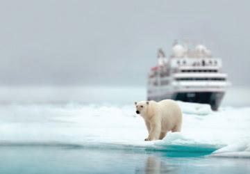 SILVERSEA CRUISES®   Save $250 per suite on Classic   Cruises  and $500 per suite on Expedition   Cruises  .