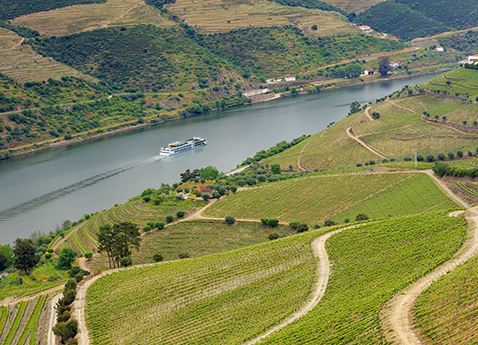 Osfrid_Douro_River_Vineyards_Ship_478x345_tcm21-50590.jpg