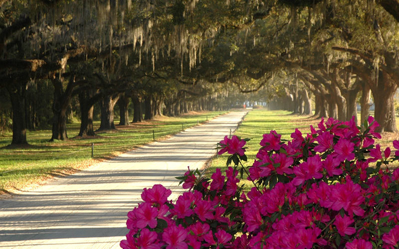 01.  World's Best City 2016 - Charleston, South Carolina, USA