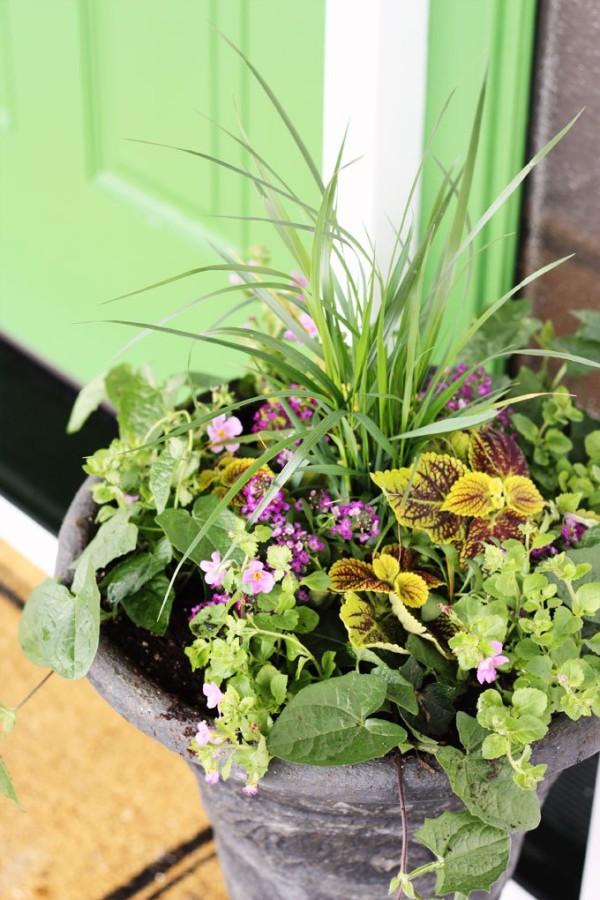 how-to-container-garden-e1430073850300.jpg