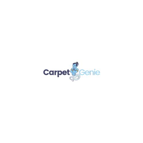 carpet genie review