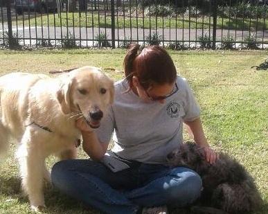 Maggie introduces adult, Josie to puppy, Snoop.