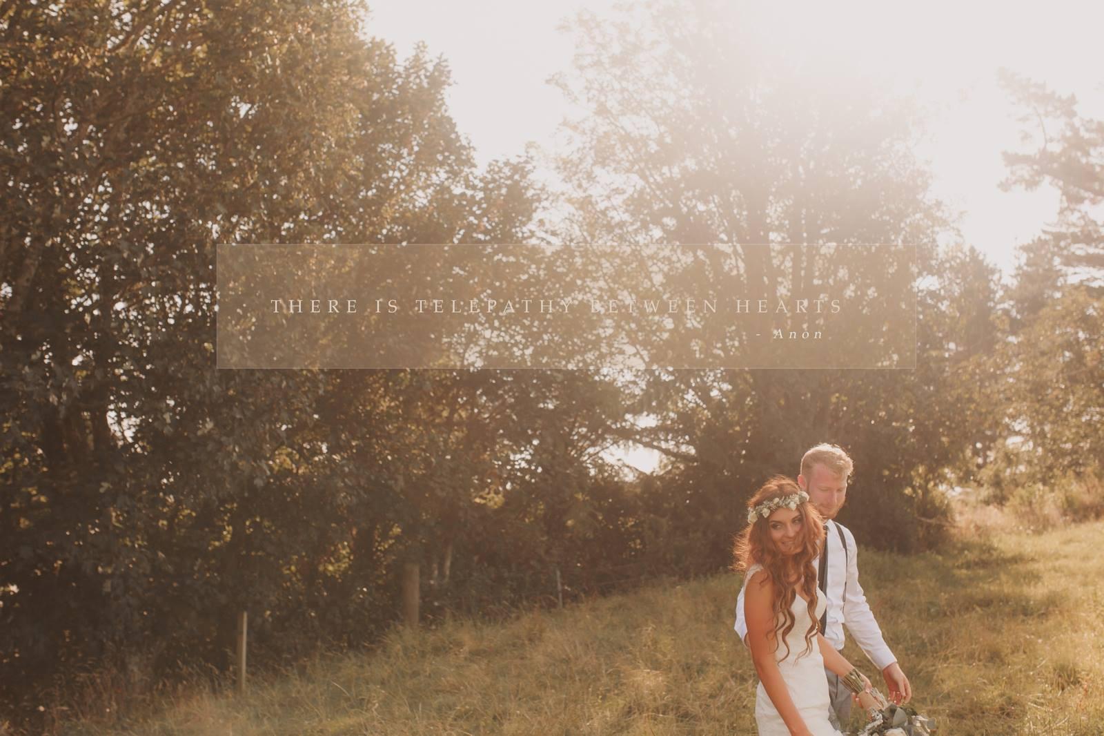 olivia - silk satin crepe - corded lace, tulle - taranaki bride