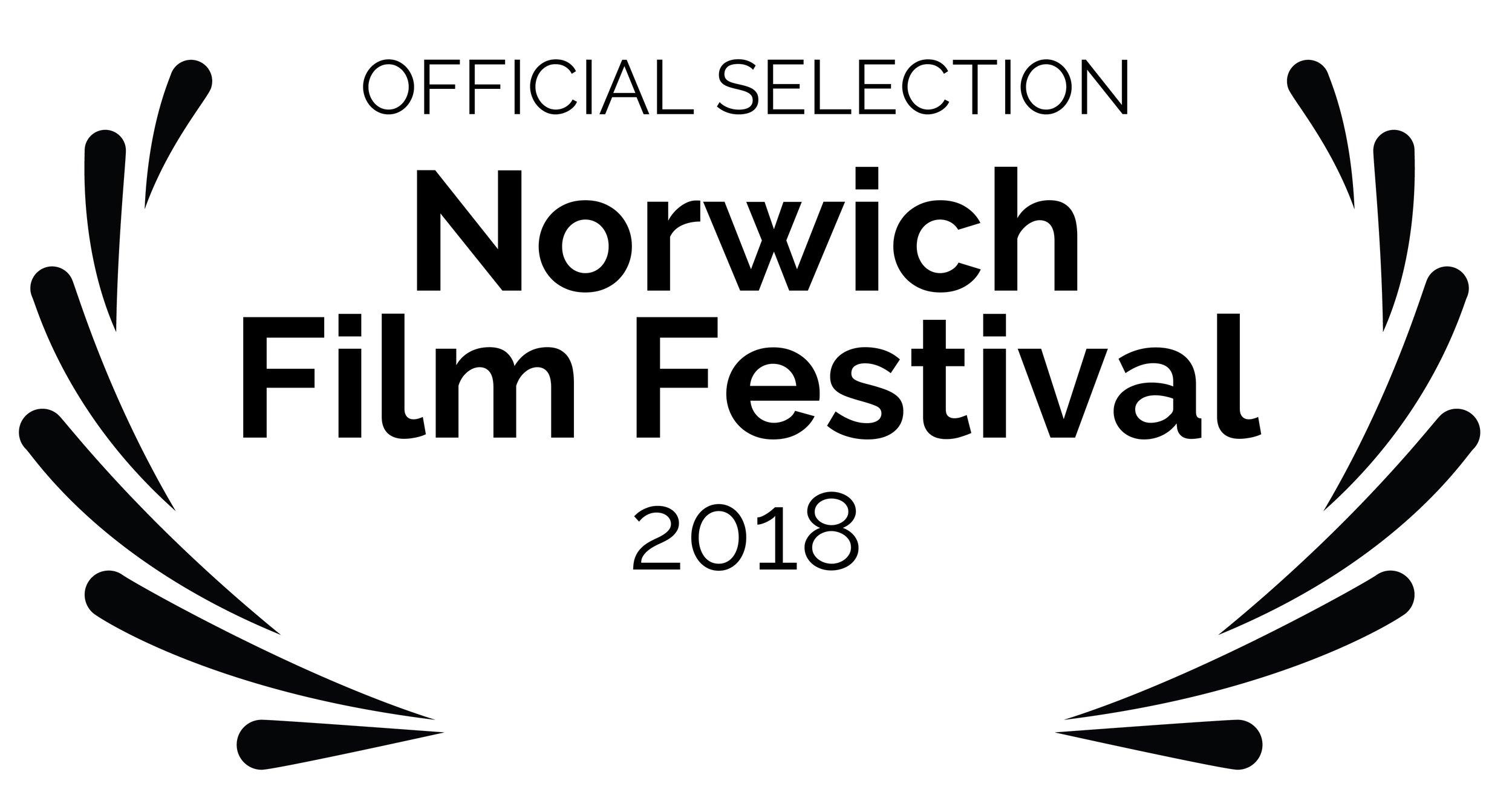 OFFICIALSELECTION-NorwichFilmFestival-2018.jpg