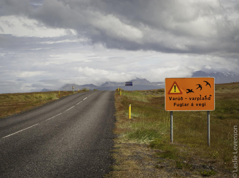 road_hellissandur.jpg