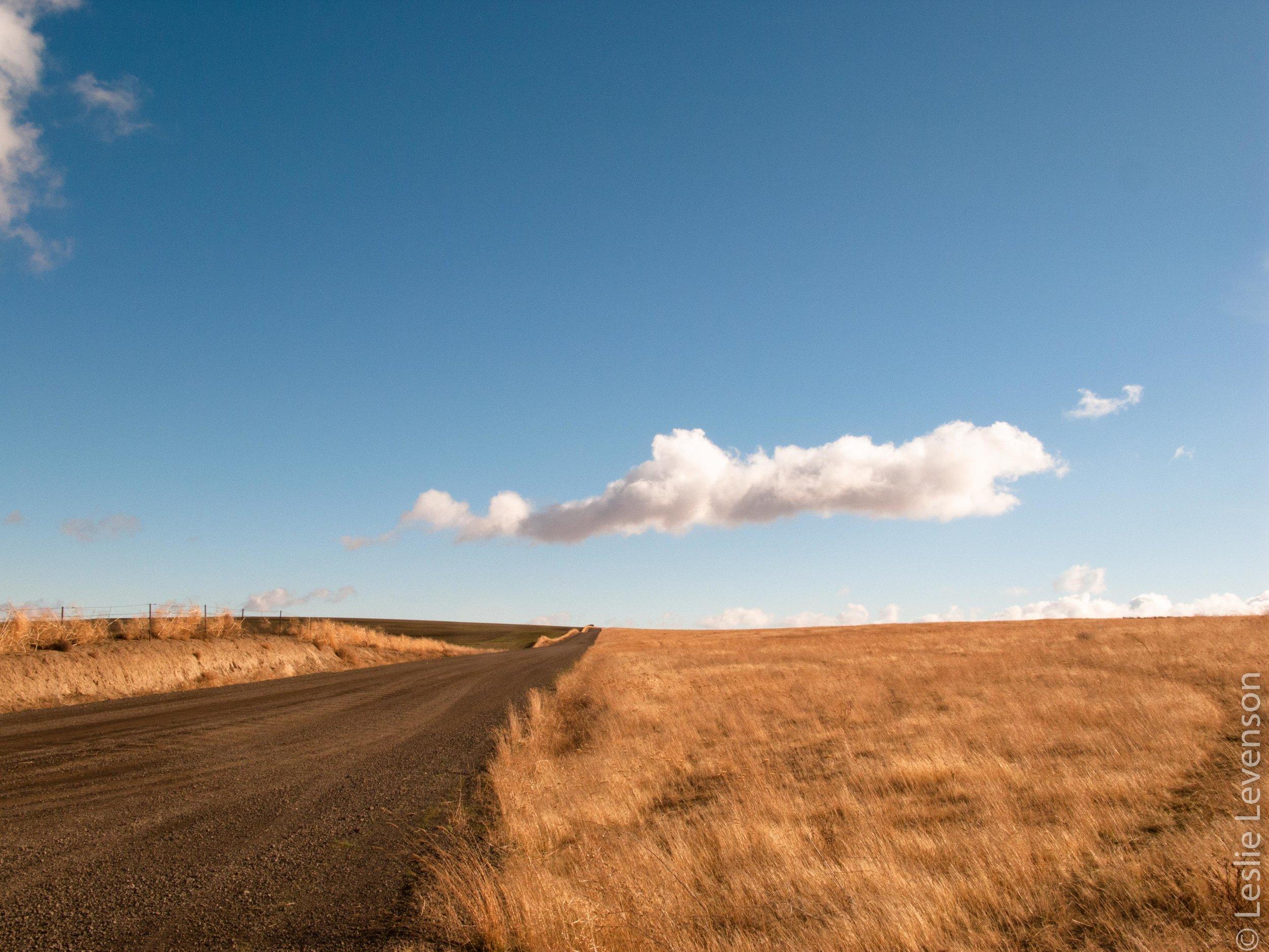 Scab lands-113.jpg