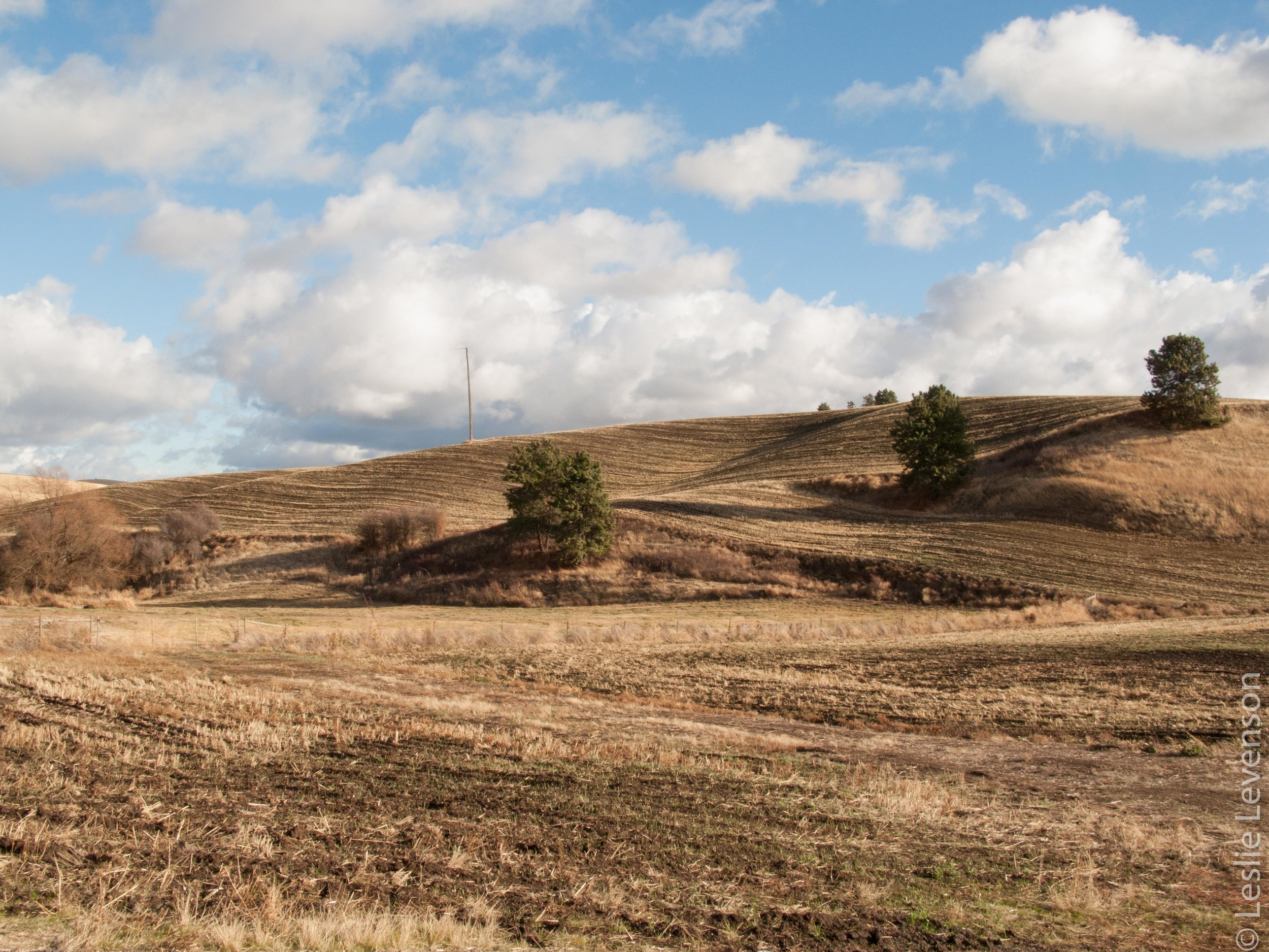 Scab lands-114.jpg