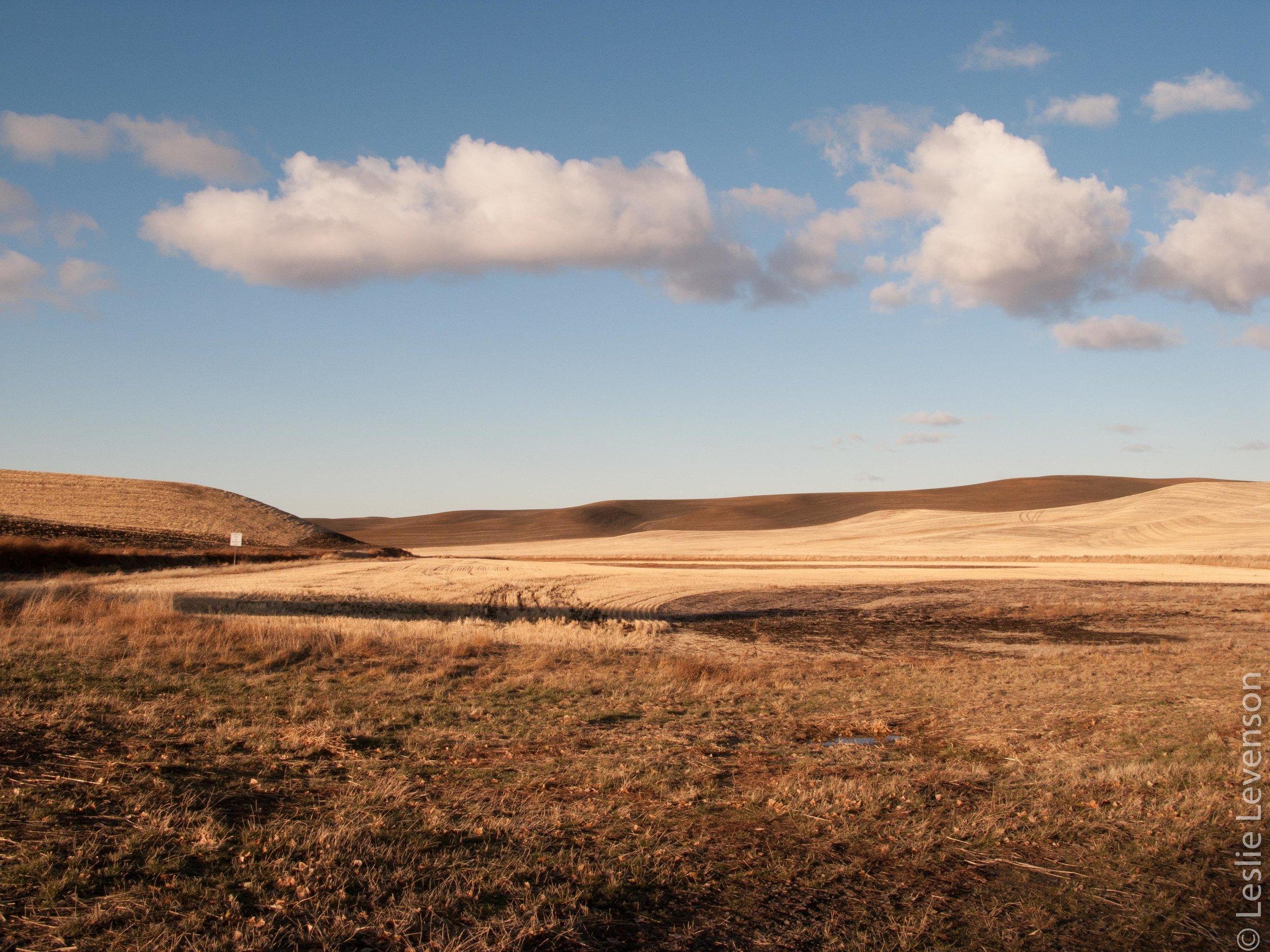 Scab lands-125.jpg