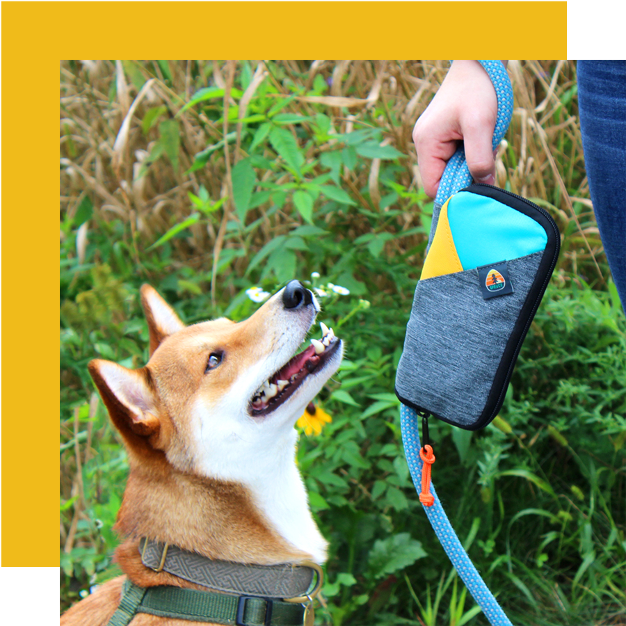 Grab & Go leash bag - The Spruce Grab & Go Leash Bag is perfect for carrying all your dog's essentials when you are on your next adventure. With handy pockets for holding pens, cards and keys, the Grab & Go Leash Bag is an essential dog-walking accessory.