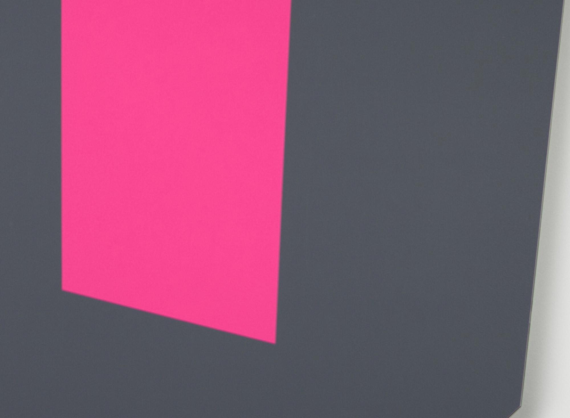 Pink-Wall-Detail.jpg