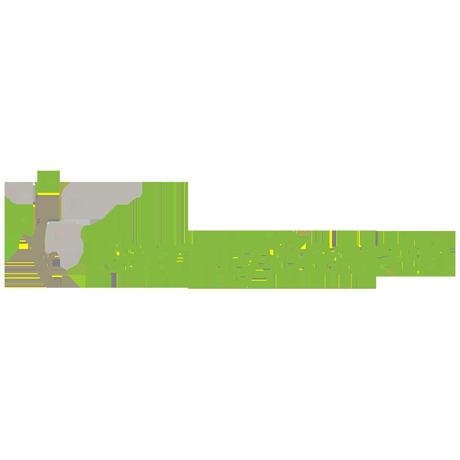 FamilySearchlogoColor.png