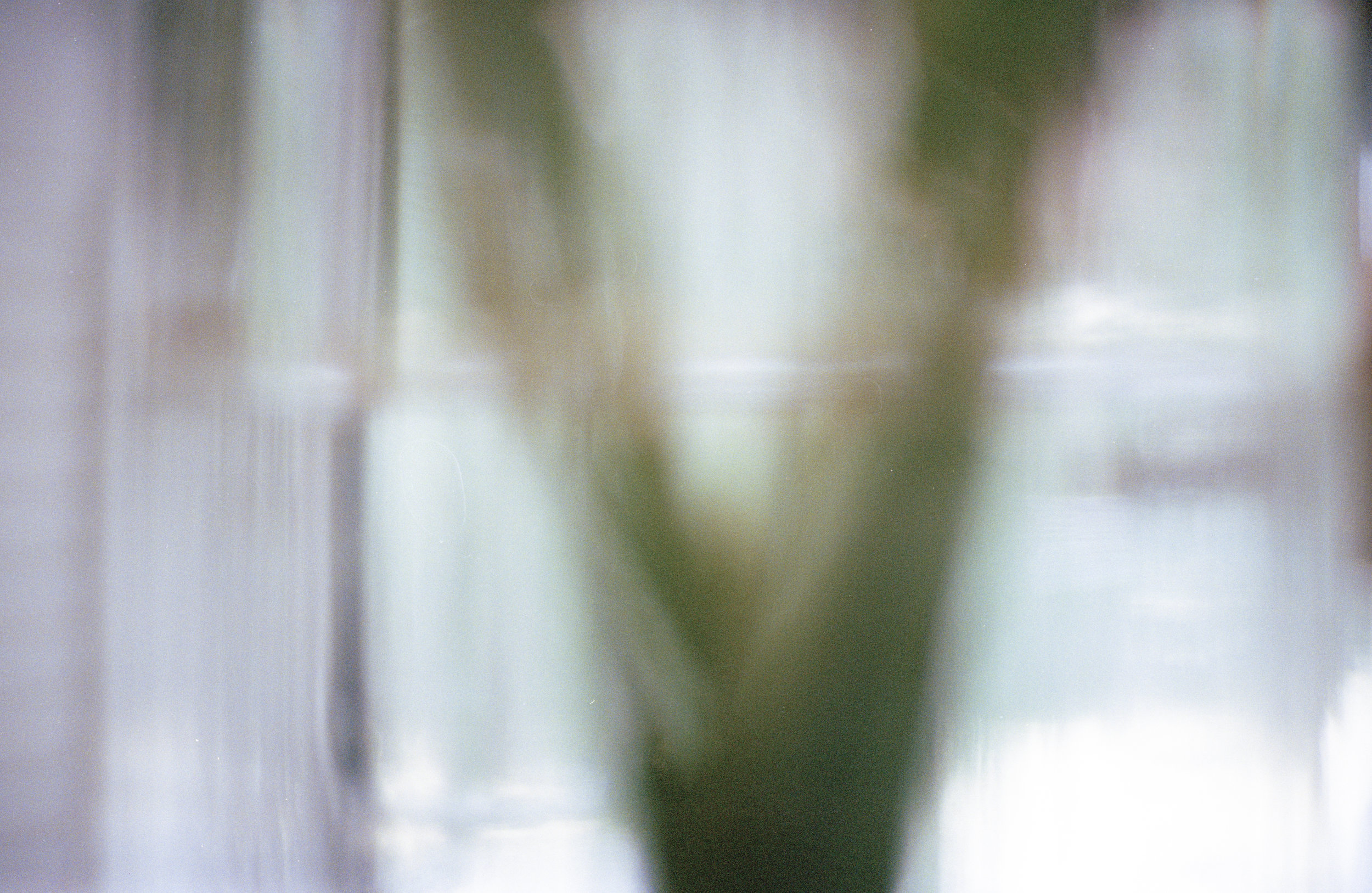 Which Will , Archival Pigment Print