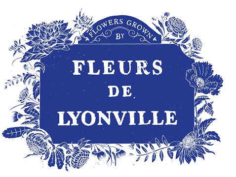 LYONVILLE : Workshiops, Tours, Weekend Roadside Stall, Wholesale Flowers by pre-order.