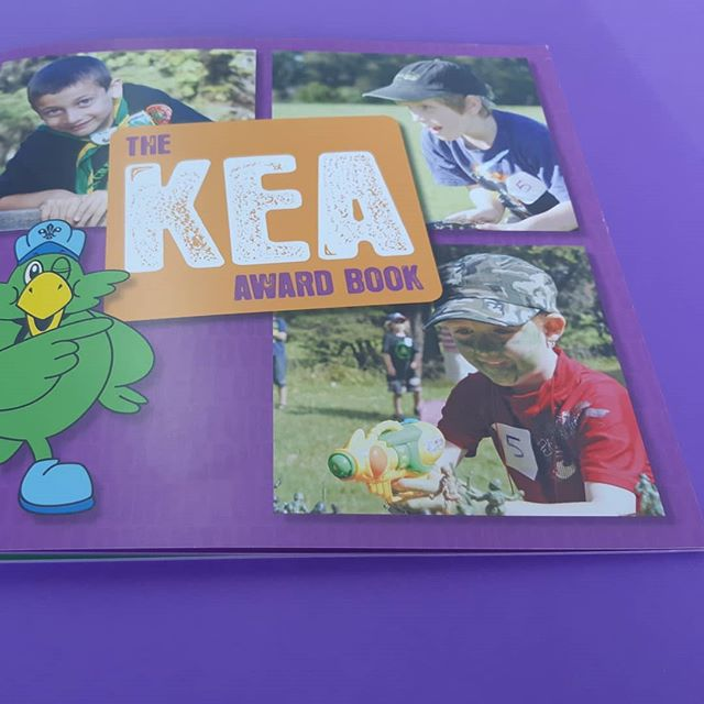 Are your kids ready for an adventure 🌳. Take a little peek at our kea and cub books. Offset printed and stapled  #valleyprint #valleyprintnz #offsetprint #books #wellingtonprint #wellington #petone