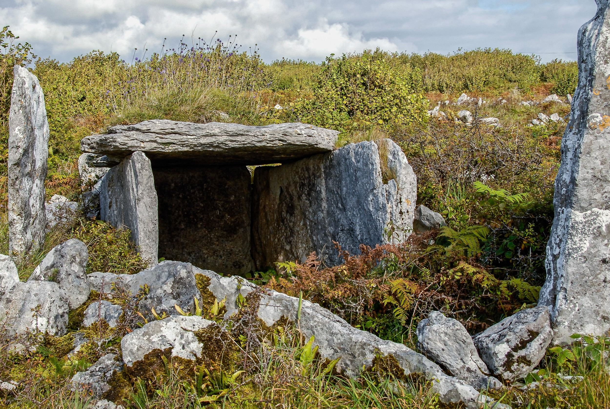 Portal tombs 4,000 years old survive on Patrick McCormick's farmland.