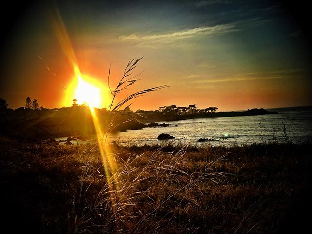 Adios sun:) #sunset #monterey #naturesrad #followyourpath #wellbeing #ososlick #osofresh #lovelife