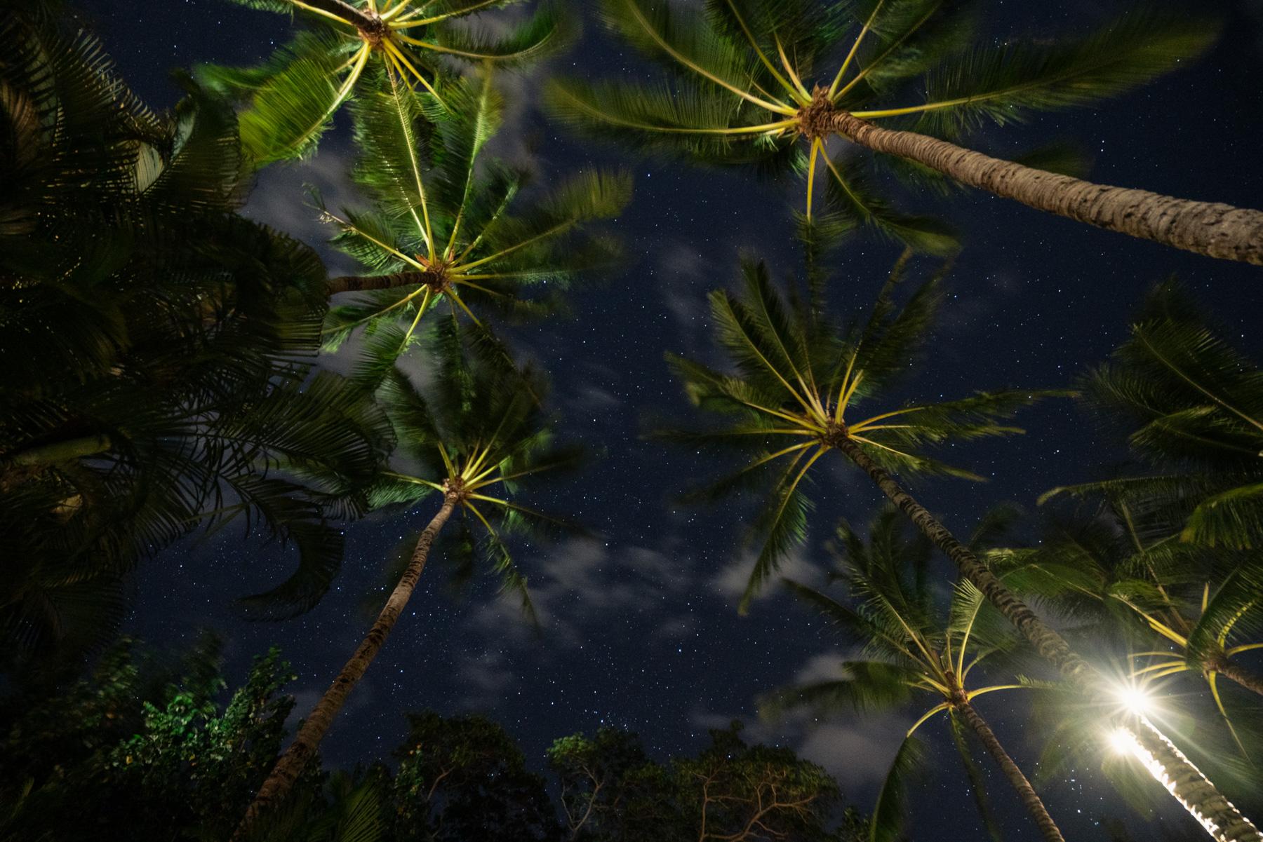 Maui-Trip-Kite-56.jpg