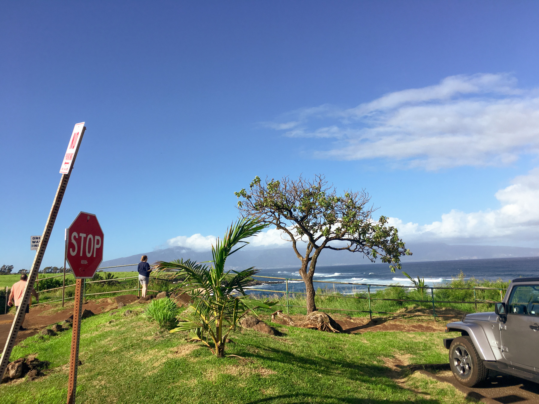 Maui-Trip-Kite-66.jpg