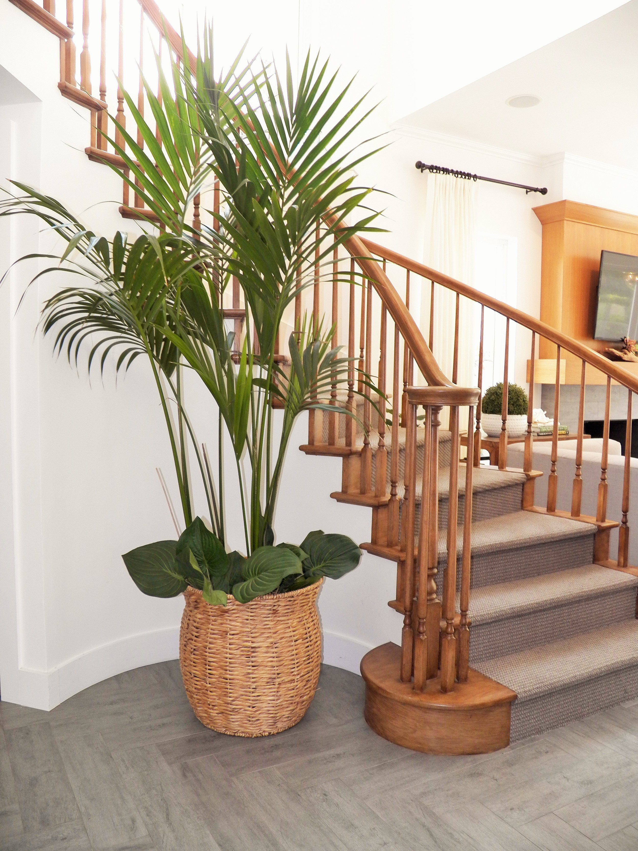 Colleen-Torres_Interior-Design-Concepts_ Monarch Beach-005.JPG