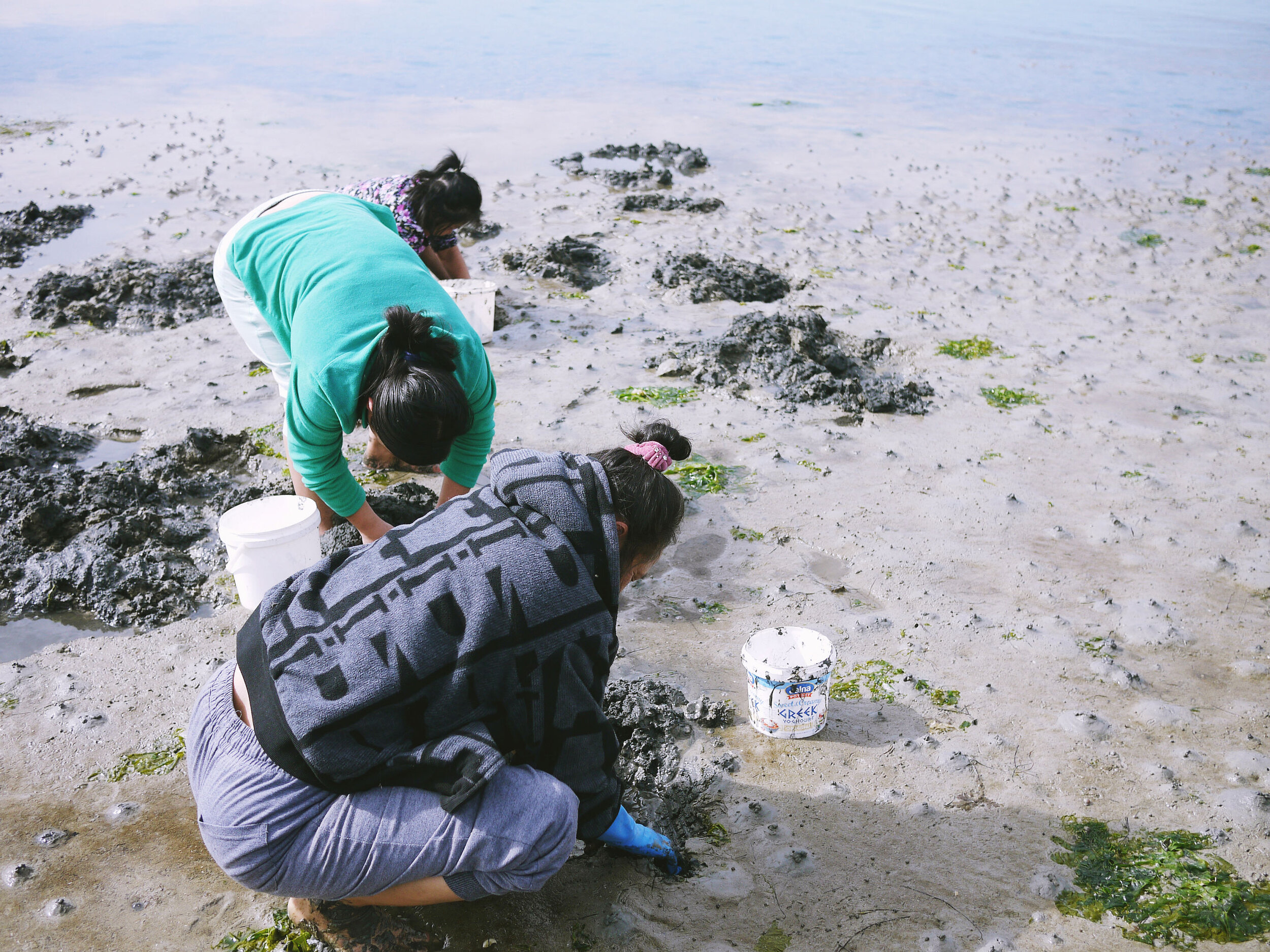 Women searching for fishing bait along the coast of Point Wilson.