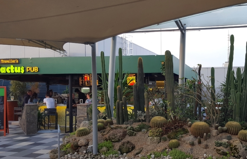 Traveller's Cactus Pub in Changi Airport