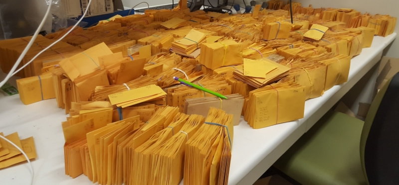 Seed envelopes to count...