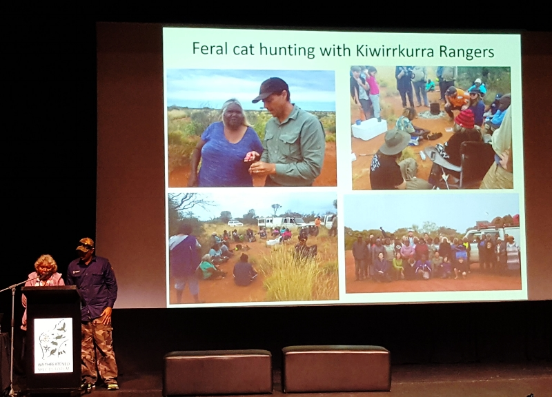 Matuwa Kurrara Kurrara Ranger progam talks about how they use traditional owner knowledge to hunt feral cats that kill native species.