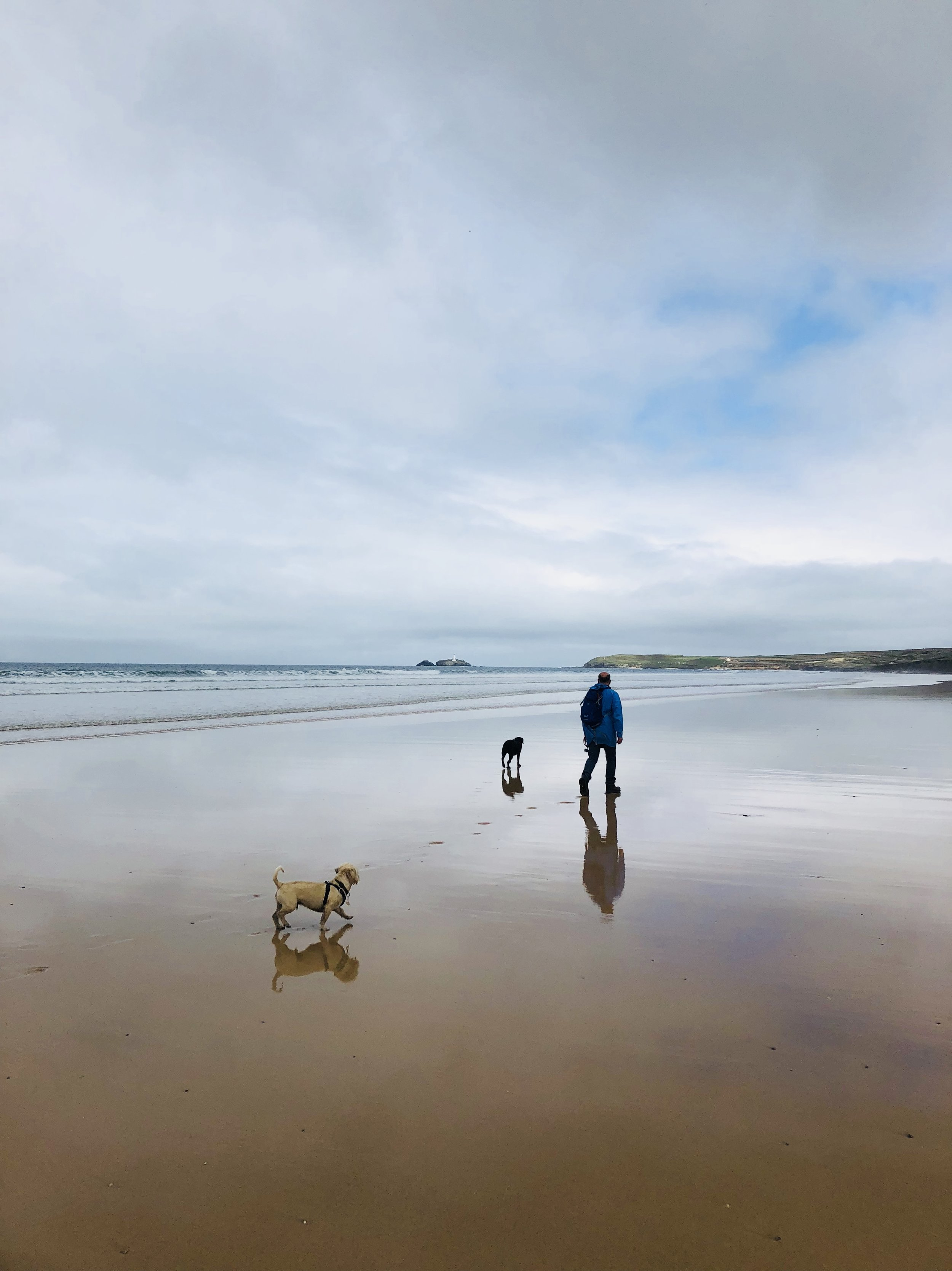 So fast now I'm overtaking dogs. Small and ageing dogs. Godrevy