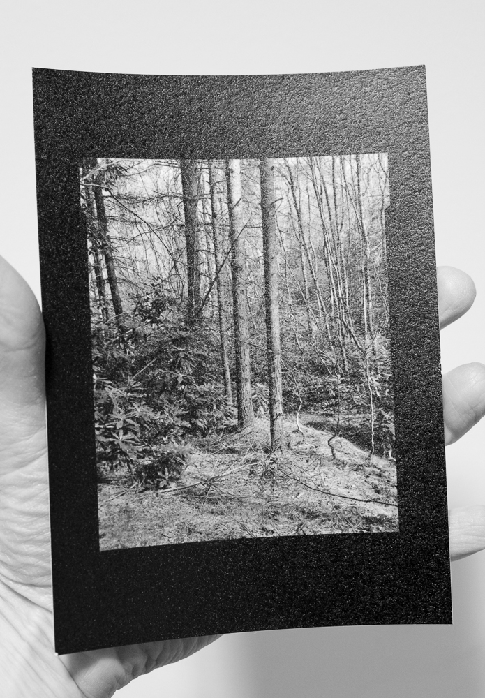 The fruits of my recent 5x4 labours:a small but magical contact print. The tonal range is impressive for a straight print. Paper is Multigrade Art 300, which explains the textured surface. Film is Delta 100 developed in Perceptol.