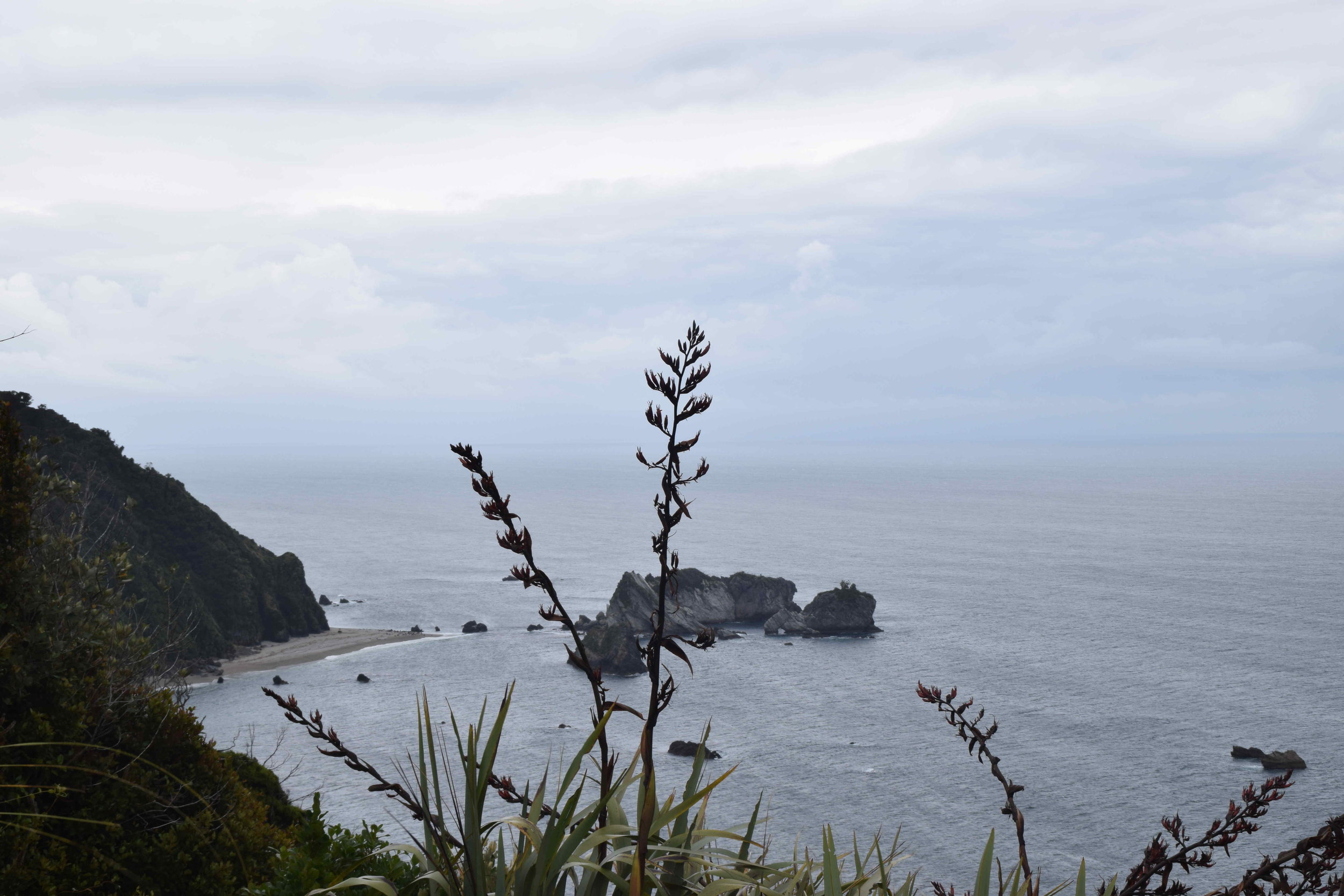 View from Knights Point lookout to Arnott Point.