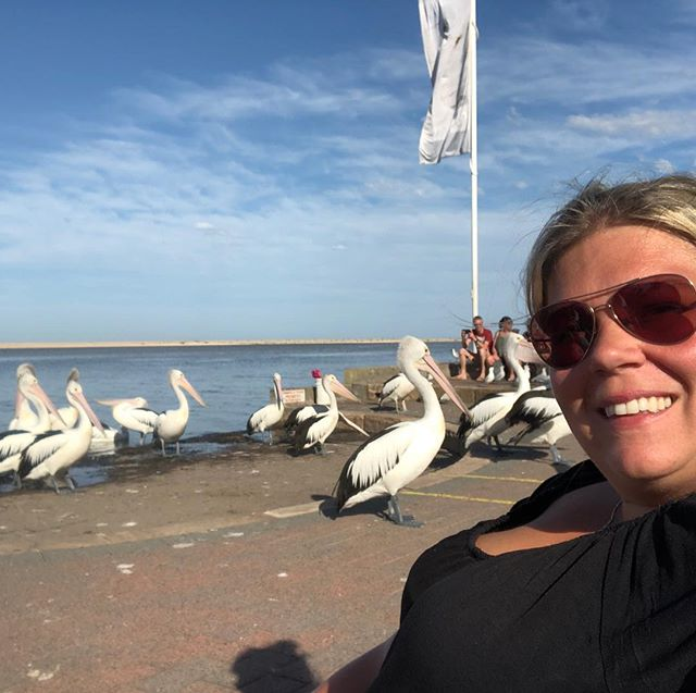 Oh hello! Making friends with some pelicans. #plussizeadventure