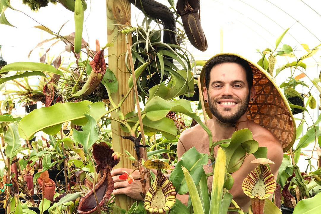 Domonick Gravine with some of his Nepenthes collection. Photograph: RedLeaf Exotics