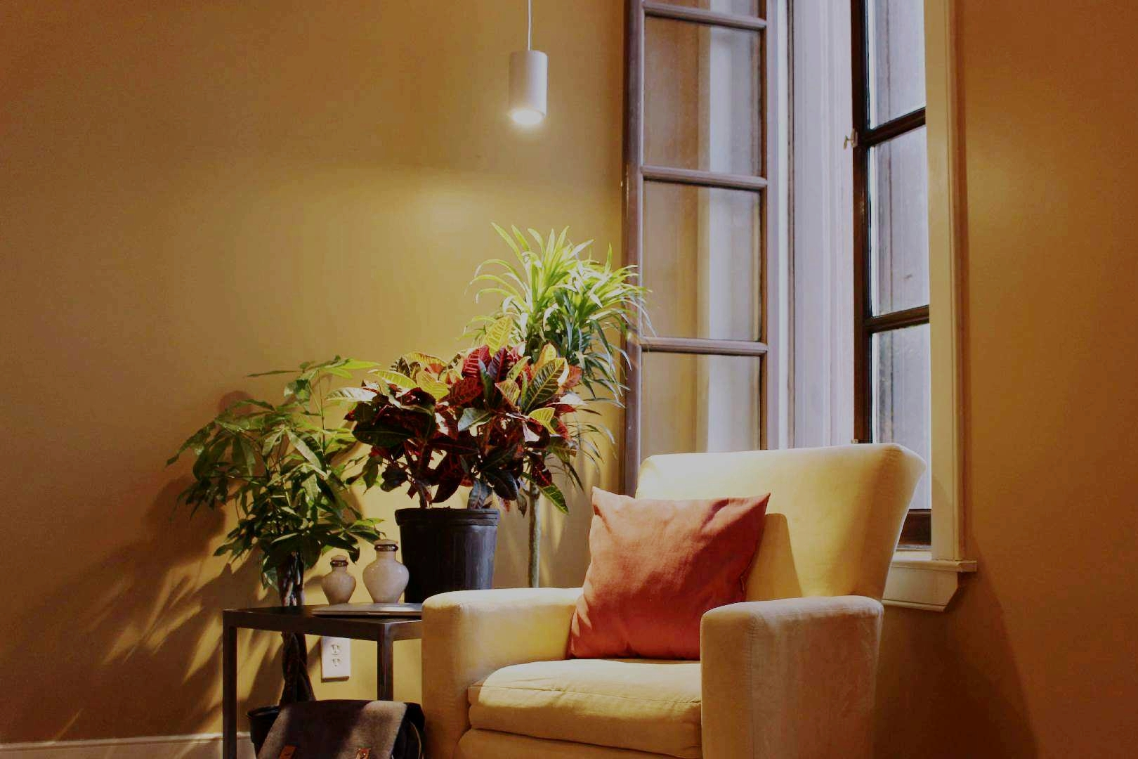 An LED growlight from  SolTech Solutions  lights up a corner of a living room. Photograph: SolTech Solutions.