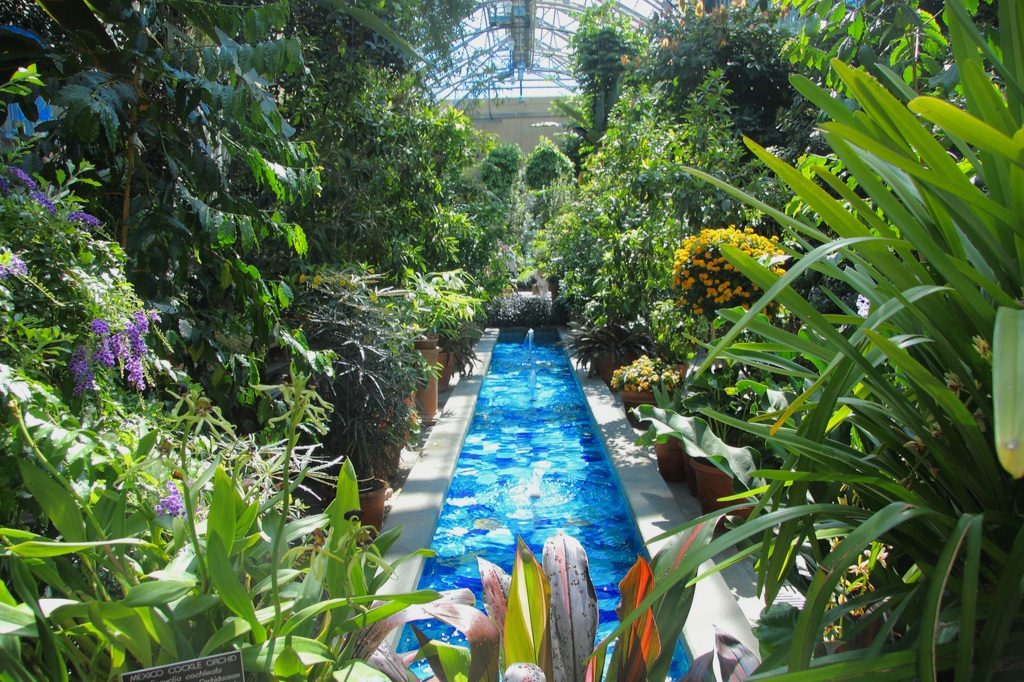 The conservatory at the US Botanical Garden in Washington DC, where Ruth Kassinger was inspired to create her own conservatory. Photograph:  John Menard  on  Flickr .