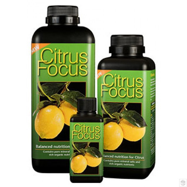 citrus-focus-growth-technology-1L.jpg