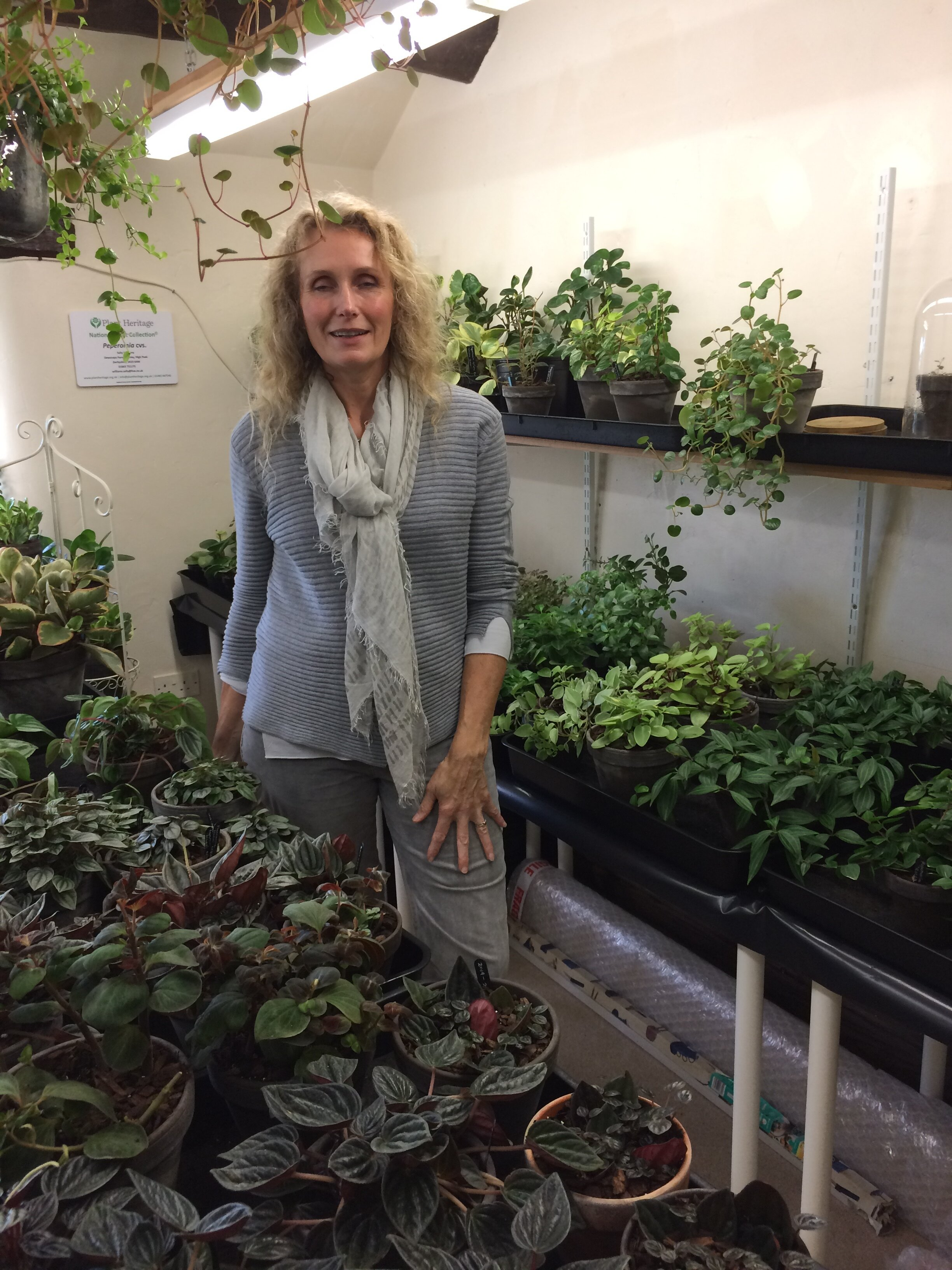 Sally Williams in her Peperomia room. Photograph: Jane Perrone