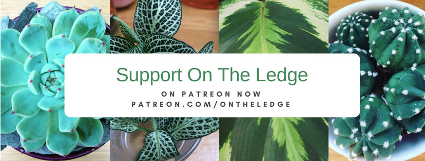 patreon support.jpg