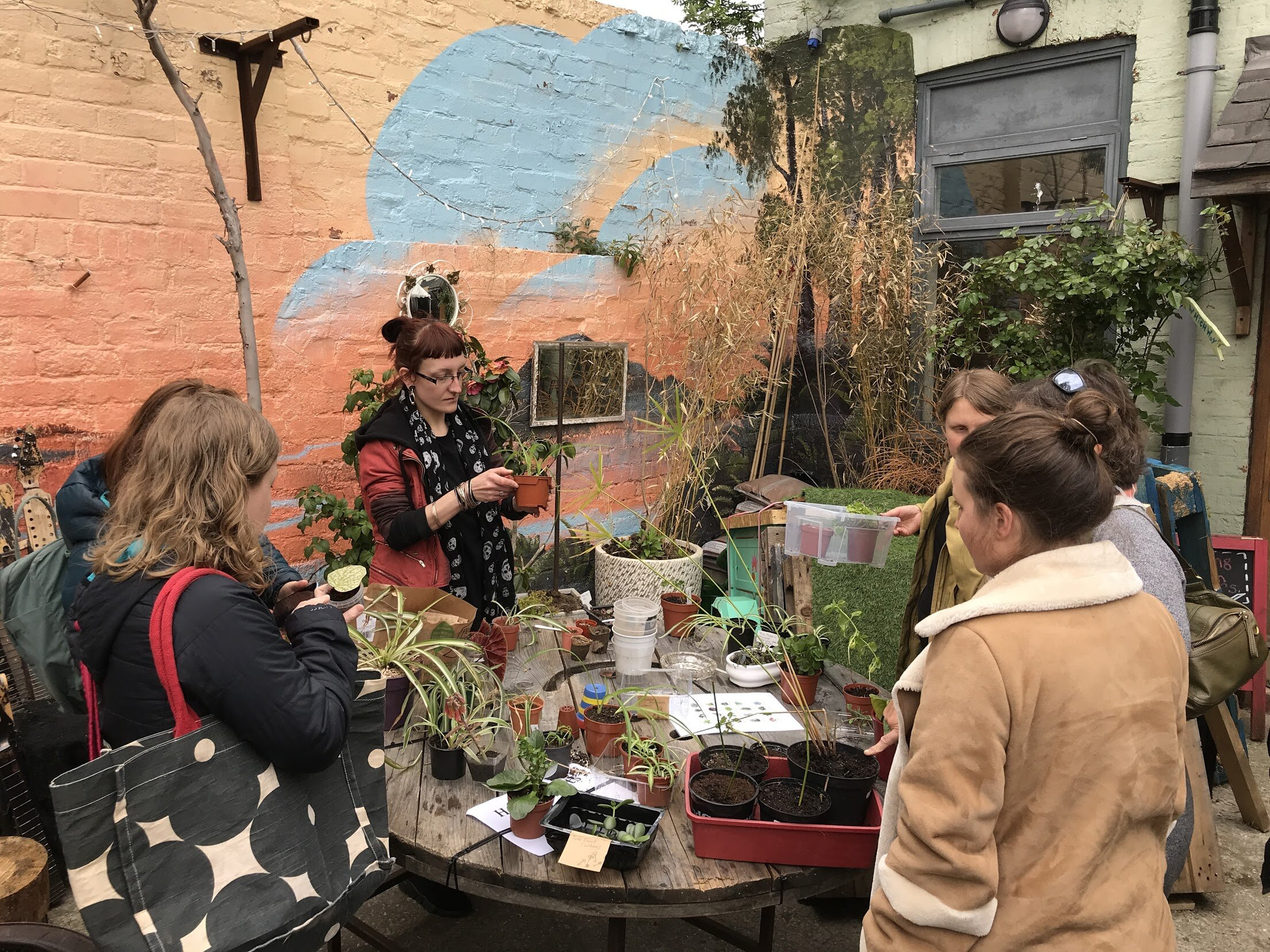 A clear set of plant swap rules will help your event to run smoothly. Photograph: Sarah Rouseeau/plantswap.uk.