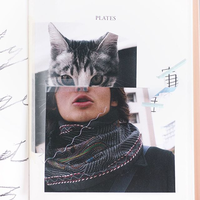 What not work out? #collage #cat #catman #fashionphotograpy #grid #stilllife #art #photooftheday #pink #book #design