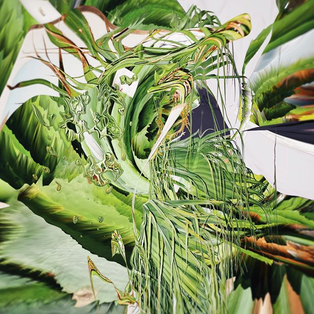 With Fine Precision The Plants Descend #collage #plant #tropical #postinternet #liquid #fashionphotograpy #green #art #distortion #midnightsafari