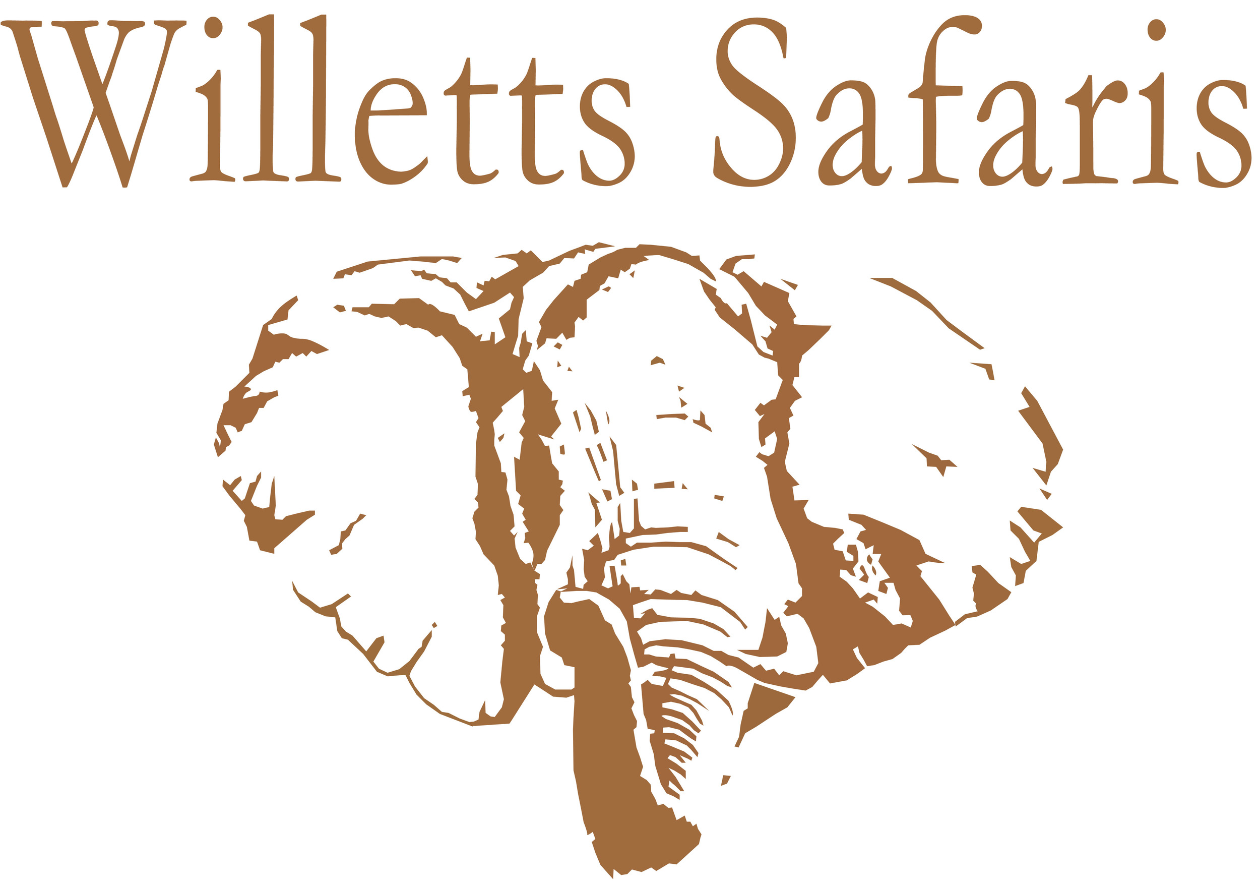 willetts logo.jpg