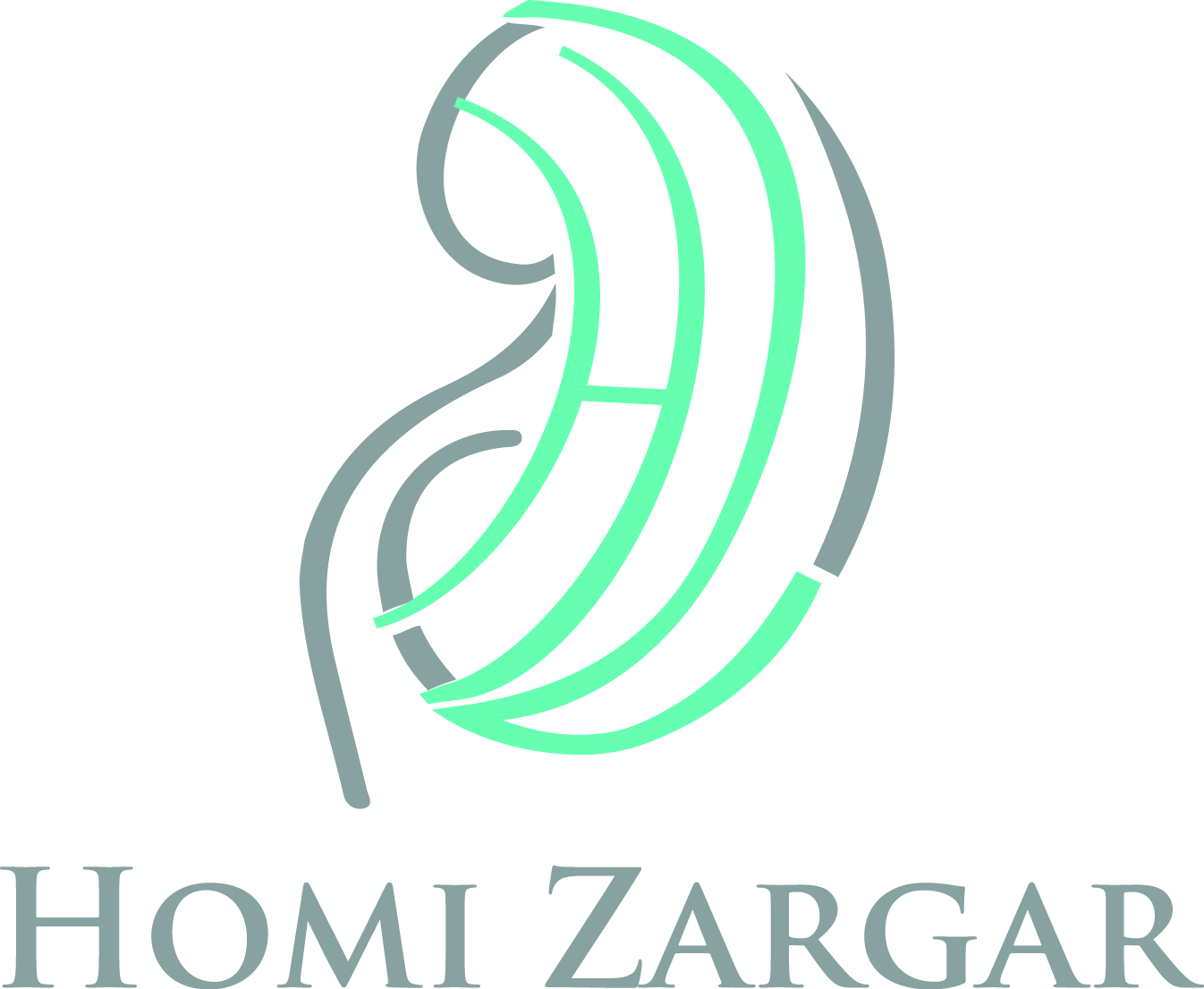Homi Zargar updated.jpg