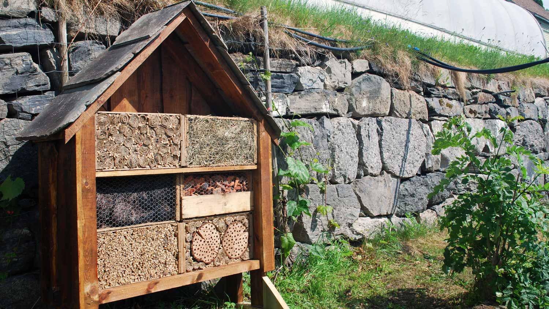 Hotell for nyttedyr på Njøs.