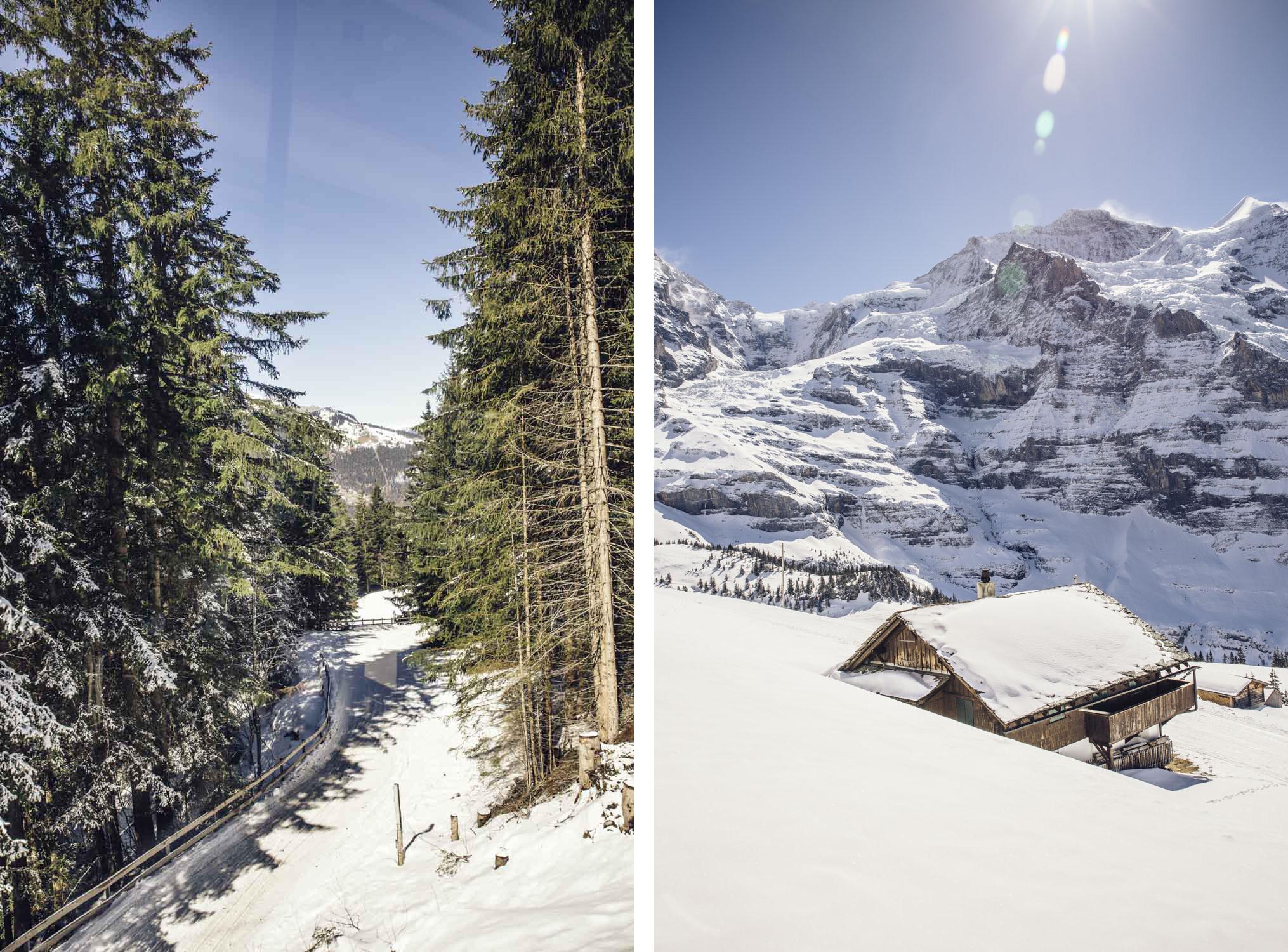 Bronwyn_Townsend_Kleine_Scheidegg_Switzerland