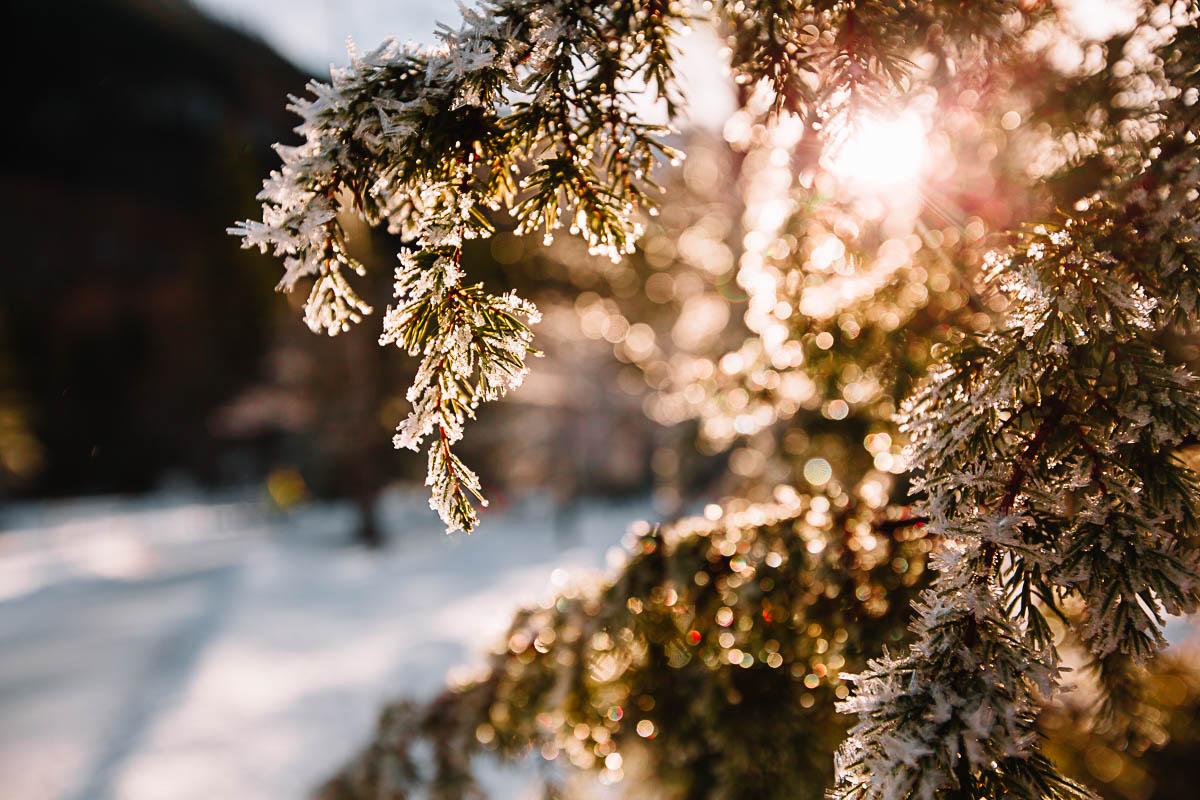 Bronwyn_Townsend_Melting_snow