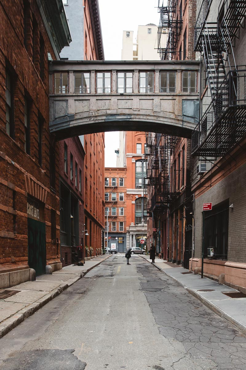 Staple Street NYC Bronwyn Townsend