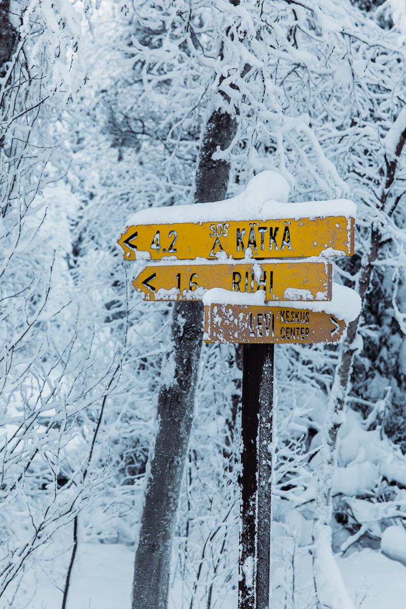 Bronwyn Townsend Lapland signs.jpg