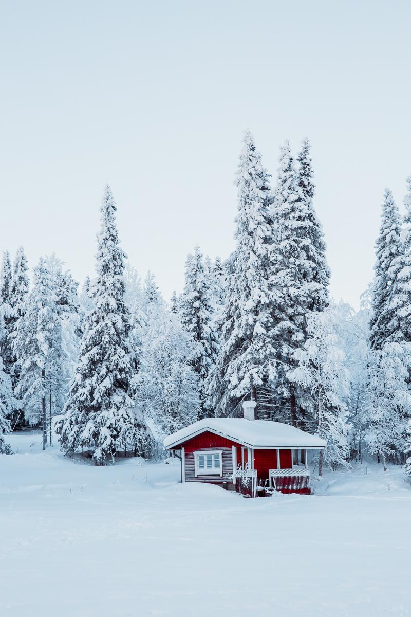 Lapland Cabin Bronwyn Townsend