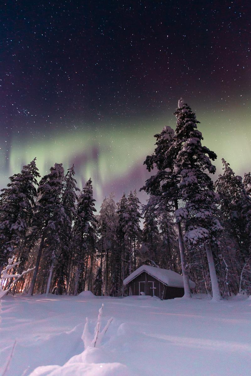 Finland Lapland Northern Lights Bronwyn Townsend